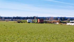 Поле сельского хозяйства земледелия Стоковое фото RF
