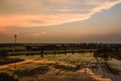 Поле скоростной дороги и риса ландшафта Стоковые Фото