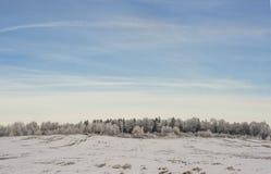Поле снега стоковые изображения rf
