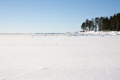 Поле снега Стоковые Фото