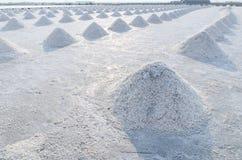 Поле соли имеет кучу соли моря Стоковое фото RF
