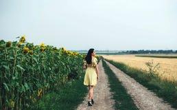 поле солнцецвета девушки брюнет расслабляющее внешнее близко Стоковое Фото