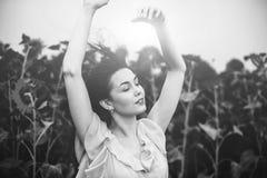 поле солнцецвета девушки брюнет расслабляющее внешнее близко Стоковое Изображение