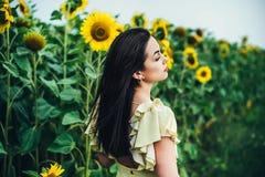 поле солнцецвета девушки брюнет расслабляющее внешнее близко Стоковая Фотография RF