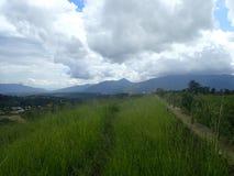 Поле с горами в предпосылке Стоковая Фотография