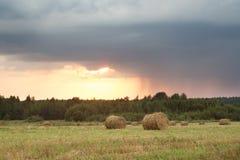 Поле с соломой свертывает на летний день стоковое изображение rf