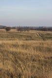 Поле травы и грязная улица Стоковая Фотография RF