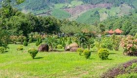 Поле травы и цветков холмы хорошо поддерживаемый запас Стоковые Фото