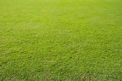 Поле травы футбола стоковая фотография