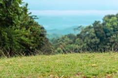 Поле травы na górze холма в Nan Стоковая Фотография RF