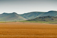 Поле урожая с горами на заднем плане стоковые фото