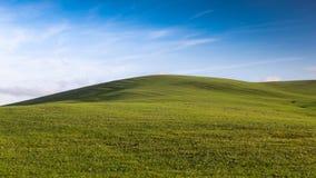 Поле утра зеленое на тосканском холме под голубым небом с облаками стоковые изображения rf