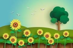 Поле цветка Солнця Стоковое Изображение RF
