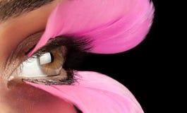 Поддельные ресницы и женский глаз Стоковое Изображение
