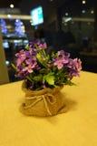 Поддельные цветки Стоковая Фотография