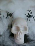 Поддельный череп с поддельными сетями паука вокруг его Стоковые Фотографии RF