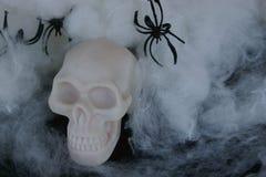 Поддельный череп с поддельными сетями паука вокруг его Стоковое Изображение RF