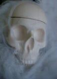 Поддельный череп с поддельными сетями паука вокруг его Стоковое Изображение