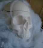 Поддельный череп с поддельными сетями паука вокруг его Стоковая Фотография