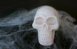 Поддельный череп с поддельными сетями паука вокруг его Стоковые Изображения RF