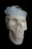 Поддельный череп с сетями паука в своей голове Стоковое фото RF