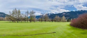 Поле для гольфа в горах стоковая фотография rf