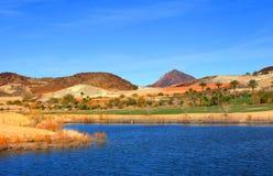 поле для гольфа около мёда озера в Неваде Стоковые Фотографии RF