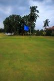 Поле для гольфа. Стоковые Фотографии RF