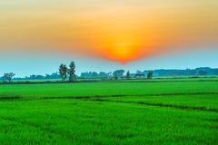 Поле HDR захода солнца Стоковая Фотография