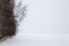 Поле Snowy в предыдущей весне Стоковые Фотографии RF