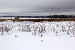Поле Snowy под хмурыми серыми небесами Стоковые Фотографии RF