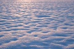 Поле Snowy Стоковые Фото