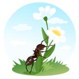 Ползания муравья на цветке Насекомые действий иллюстрация s детей Стоковые Изображения