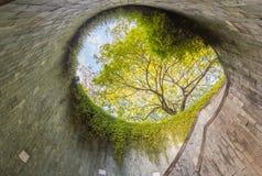 Подземное скрещивание на парке форта консервируя, Сингапуре стоковые изображения