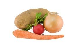 подземные овощи белые Стоковые Фотографии RF