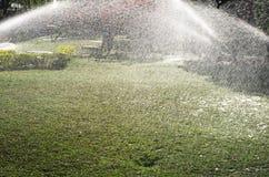 Полив сада Стоковая Фотография