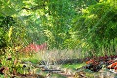 Полив сада Стоковое Изображение