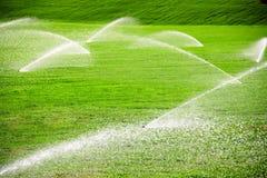 полив травы Стоковое Изображение