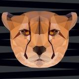 Полигональная абстрактная геометрическая предпосылка гепарда треугольника для пользы Стоковое Изображение