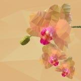Полигональная мозаика иллюстрации вектора орхидеи Стоковое Изображение