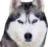 Полигональный волк Полигональный волк иллюстрации стиля Вектор Illust Стоковые Фото