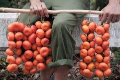 Подлинный местный рынок где-то в Caribe стоковое фото rf