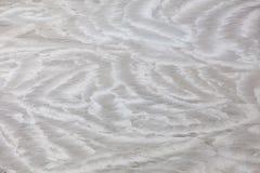 Полируя бетон Стоковое фото RF