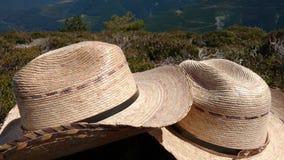 Полисмен горы стоковое фото rf