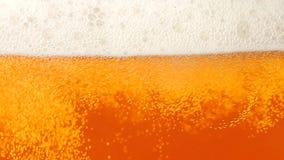 политое стекло пива closeup движение медленное акции видеоматериалы