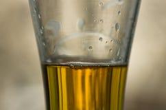 Политый крупный план пива Стоковая Фотография RF