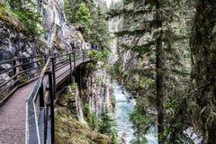 Подиумы над каньоном Banff Johnston стоковые фото