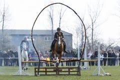 Полиция лошади увольняет скакать барьера Стоковые Фото