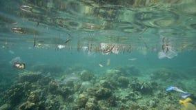 Полиэтиленовые пакеты и другой отброс плавая под водой сток-видео