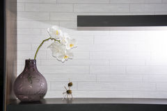 Полка на стене с цветками и игрушкой вазы Стоковые Фото
